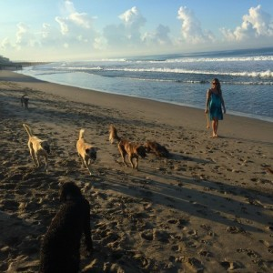 Tiffany Pendola Playing With Dogs Beach
